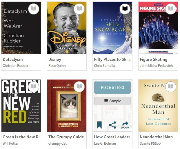 overdrive ebook system at helmet library