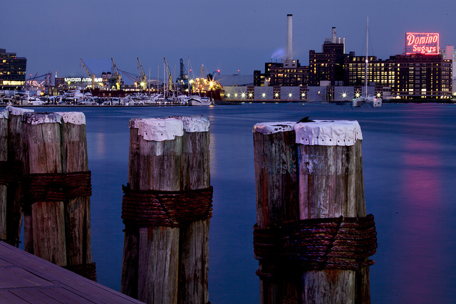 Baltimore harbor, photo by Beau Considine