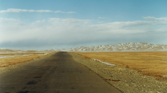 open road into the horizon in Gobi desert, Mongolia book