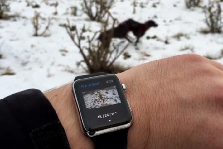 gopro camera app on apple watch