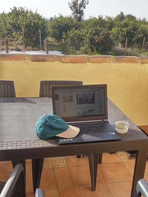 digital nomad working at a terrace near fruit farms of Murcia