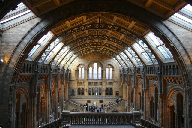 Natural History Museum in London. Photo:  Kathryn Wright.