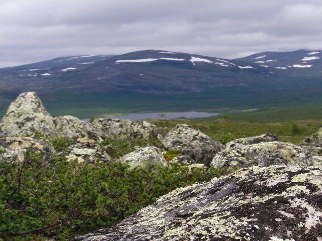 fell scenery in lapland kilpisjärvi